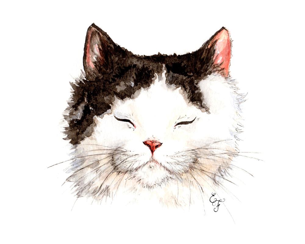 CATa_1